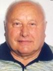 Josip Sarka