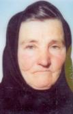 Danica Vulić