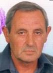 Mijo Gajnok