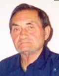 Vojislav Ćićić