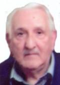 Dragoljub Podgornik